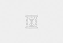 奇石菊花石——艺术是无价的-菊花石艺术品
