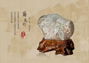 自然的艺术珍品浏阳菊花石