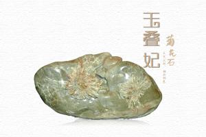 菊花石有哪些种类