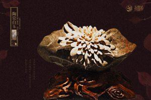 隐士君子菊花石与菊文化