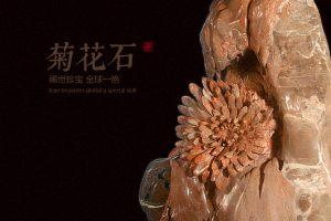 天工造物之玉化菊花石