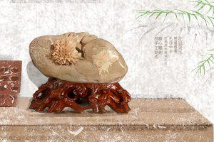 全球唯一浏阳菊花石