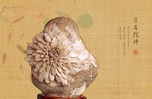 坚持是成为优秀菊花石雕师的第一步
