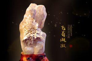 菊花石中的珍贵原料彩色菊花石