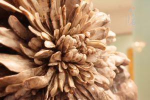 彩色菊花石雕原料优于工艺