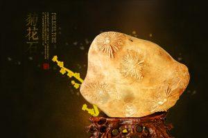 湖南浏阳菊花石价格_菊花石是如何形成的-菊花石艺术品