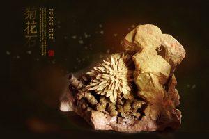 菊花石雕刻的艺术特点