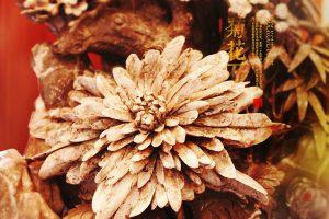 自然界地质孕育出的奇珍 菊花石