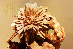 菊花石之爱