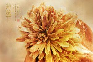 珍惜每一块菊花石,让菊花石雕作品尽善尽美!