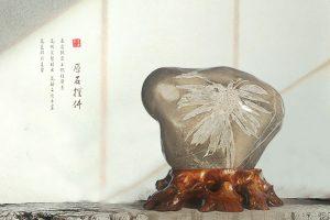 菊花石的养石藏石之趣