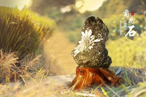 菊花石山子雕的文化意蕴