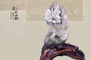 收藏摆放菊花石如何考虑风水设计