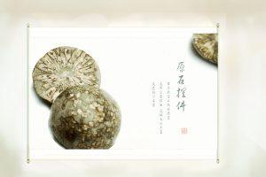 高雅的文玩石——菊花石