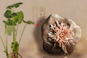 菊花石之美,贵在天然