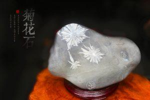 最美浏阳菊花石